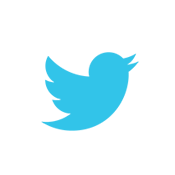 twitter large icon